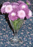 detail of miniature mauve mums in a mini wine glass